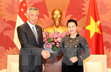 Vietnam legislature delighted with ties with Singapore