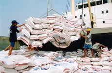 Vietnam's rice exports drop in Q1