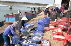 Agro-forestry-fishery exports hit 7.6 billion USD in Q1