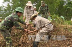 US-based PeaceTrees delegation visits Vietnam