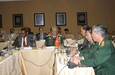 Vietnam, South Africa hold second defence policy dialogue