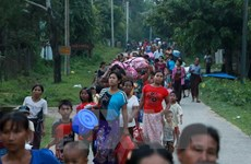 Malaysia continues quest for illegal migrant workers