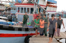 Twenty-eight fishermen rescued in NinhThuan