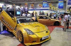 Vietnam supports domestic automakers