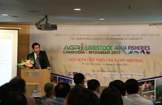 Opportunities for Vietnamese firms in Cambodia, Myanmar