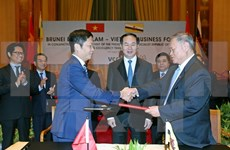 Vietnam, Brunei develop trade relations
