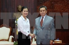 Vietnamese, Lao front agencies boost cooperation