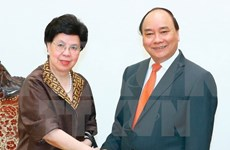 Prime Minister meets WHO leader in Hanoi