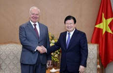 Deputy PM receives Russian, Irish ambassadors