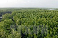 Programme on gas emission and deforestation reduction gets approved