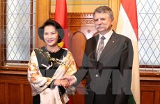 Vietnamese, Hungarian legislators discuss law perfection