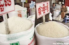 Cambodia calls for Philippine investment in rice production