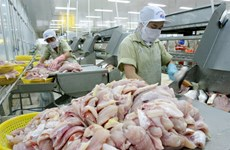 Vietnamese catfish exporters gear up for US inspections