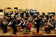 Two concerts feature artists of Vietnam, RoK