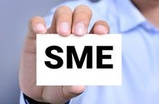SME fund fails to meet lending target