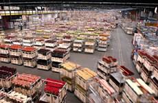 Deputy PM visits world's largest flower auction platform in Netherlands
