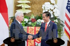 Indonesia, US strengthen strategic partnership