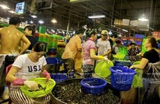HCM City boosts international cooperation in expanding Binh Dien market