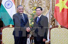 Vietnam, India should early define cooperation directions to 2020: official