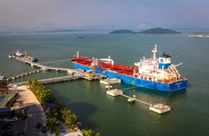 VN-Index down, Petrolimex debuts