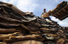 Thailand, Malaysia, Indonesia to stabilise rubber price