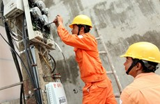 EVN told to handle loss-making projects