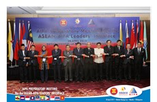 Vietnam contributes two proposals to AIPA Message