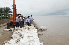 Bac Lieu: 340 billion VND needed to repair sea dyke erosion