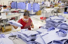 Amazon provides ideal channel for Vietnam's apparel sale in EU
