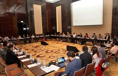 APEC trade policy on environmental services deliberated