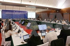 Sixth working day of SOM 2 and related meetings