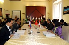 Vietnamese ambassador chairs ASEAN Committee in Rome's meeting