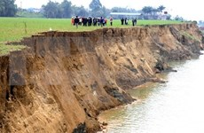 Illegal sand mining in Phu Tho continues despite ban