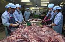 Vietnam, Denmark share experience in food safety