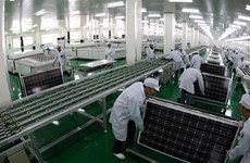 Taiwanese investors interested in Vietnam's solar energy projects