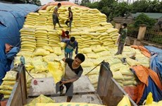 Vietnam's fertiliser imports surge in five months
