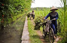 ADB helps Indonesia strengthen food security with 600 million USD loan