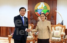 Vietnam steps up Lao National Assembly building project