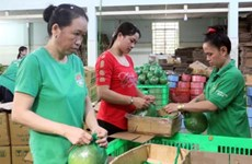 Ho Chi Minh City starts 8th green product consumption campaign
