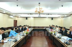 Vietnam, Laos hold second political consultation