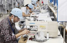 Number of new businesses increases in VN