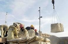 Cement export tax burdens domestic firms