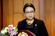 Indonesia bolsters economic cooperation with Nigeria