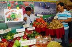 Vietnam's food industry seeks to build brand