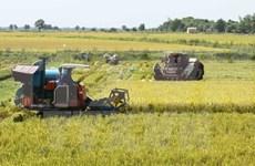 Australia seeks hi-tech agriculture link with Mekong Delta