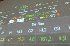 HNX nets 2.4 trillion VND in auctions
