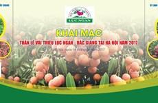 Luc Ngan lychee week opens in Hanoi