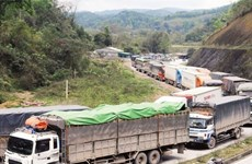 Vietnam eyes export boost through Chinese border