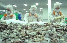 Australia agrees to re-import processed shrimps from Vietnam