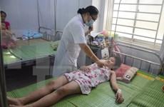 Hospitals urged to improve dengue fever treatment